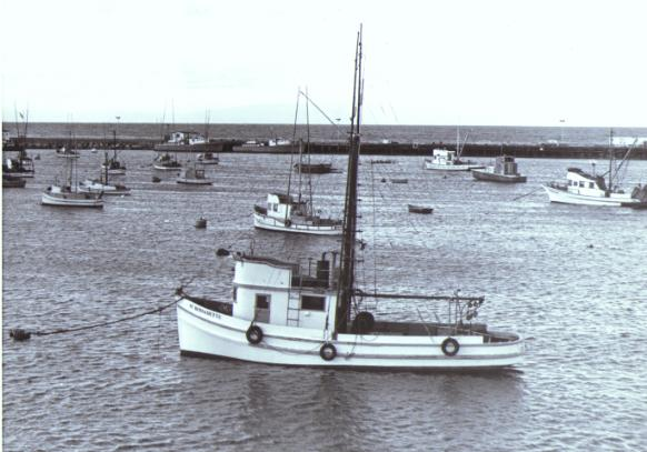 Fishing Boats at Anchor Monterey Harbor, Monterey California 1970, Copy Righted 1970 &copy Bruce Perdue, All rights reserved